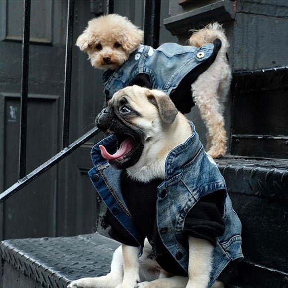 Fashion Dog Vest Denim Coat Jacket