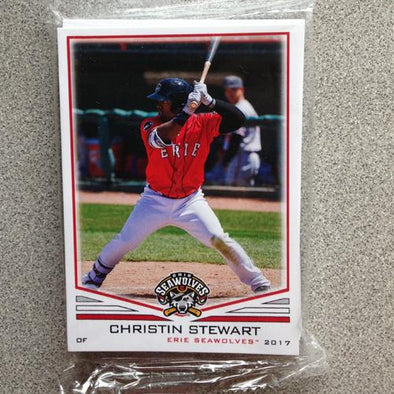 2017 Erie SeaWolves Team Set