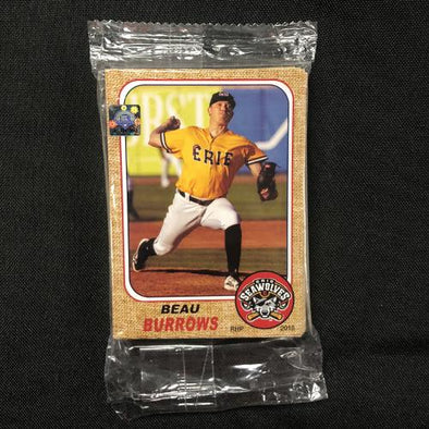 2018 Erie SeaWolves Team Set