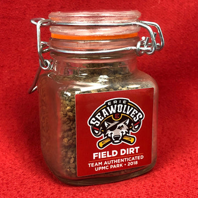 Authentic UPMC Park Infield Dirt