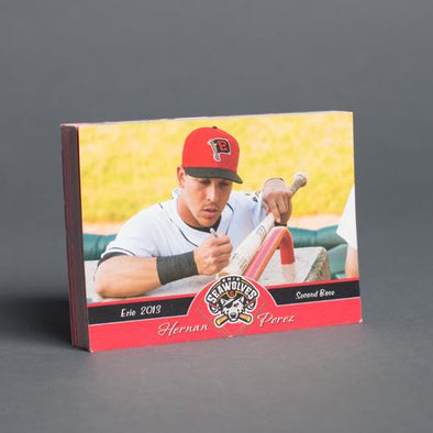 Erie SeaWolves 2013 Erie SeaWolves Team Set