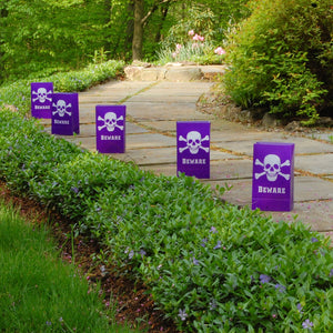 Purple Skull and Crossbones
