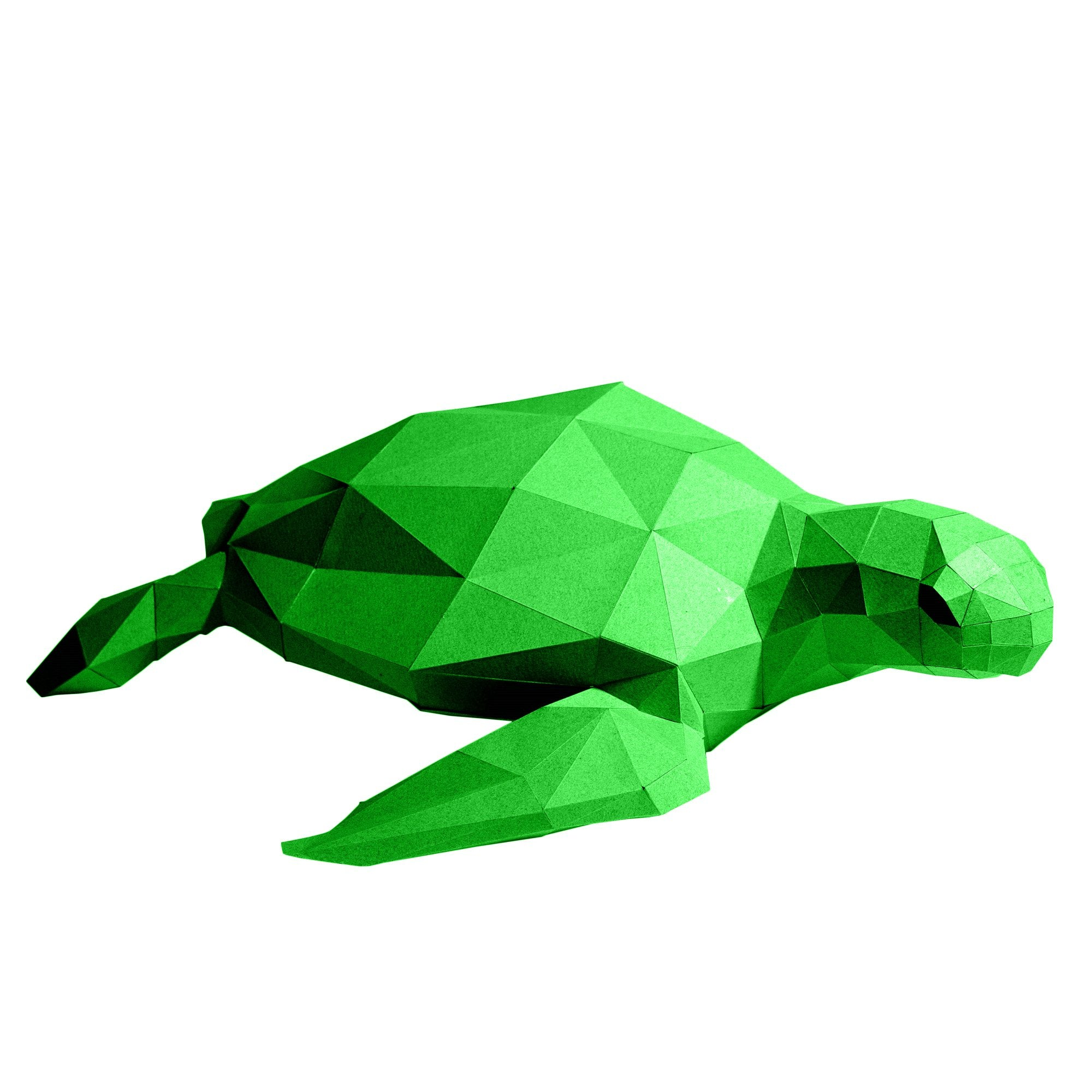 PAPERCRAFT WORLD Sea Turtle 3D Papercraft Model in Green