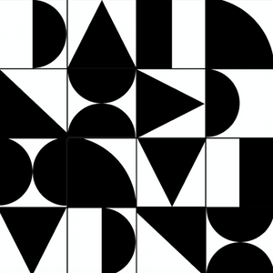 Abstract Geometric Black & White Sample