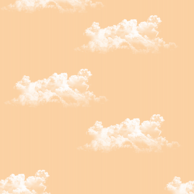 Clouds Orange