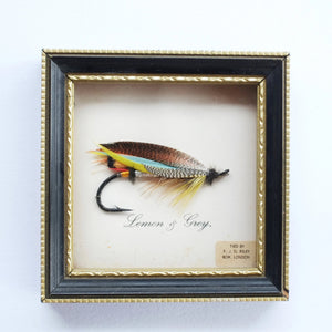 "F. J. G. Riley, ""Lemon & Grey"" Fly"