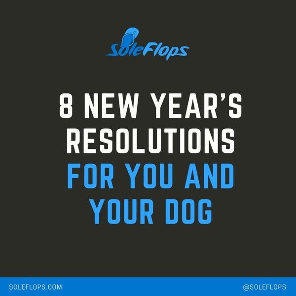 sole flops' 8 new year's resolutions for you and your dog