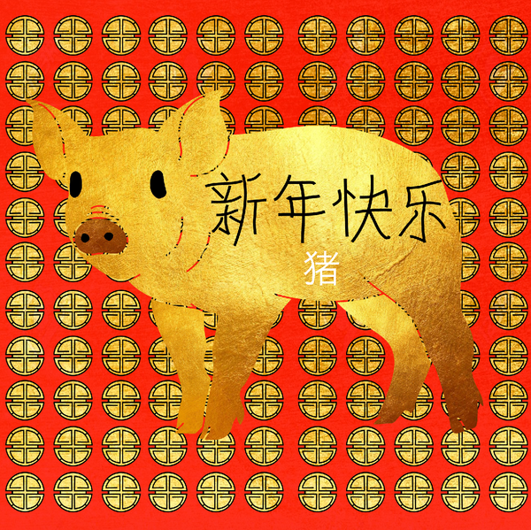 Year Of The Pig!