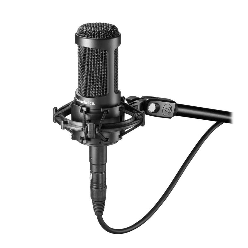 Audio Technica AT2035 Cardioid Condenser Microphone Bundle with Behringer U-PHORIA UM2 2x2 USB Audio Interface and 5-Pack of Blucoil Reusable Cable Ties