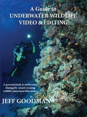 A Guide to Underwater Wildlife Video & Editing