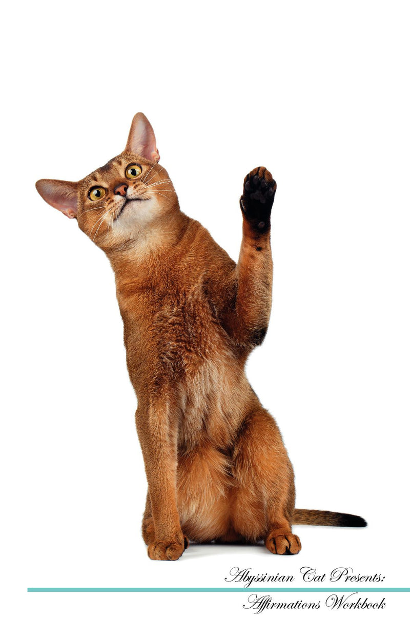 Abyssinian Cat Affirmations Workbook Abyssinian Cat Presents: Positive and Loving Affirmations Workbook. Includes: Mentoring Questions, Guidance, Supporting You.