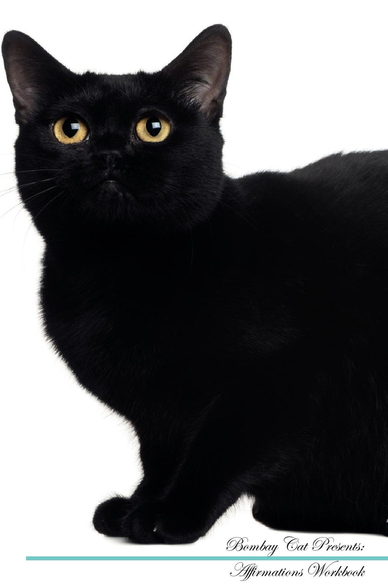 Bombay Cat Affirmations Workbook Bombay Cat Presents: Positive and Loving Affirmations Workbook. Includes: Mentoring Questions, Guidance, Supporting You.