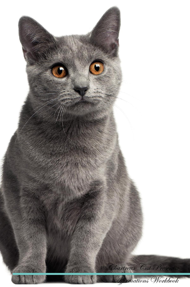 Chartreux Cat Affirmations Workbook Chartreux Cat Presents: Positive and Loving Affirmations Workbook. Includes: Mentoring Questions, Guidance, Supporting You.