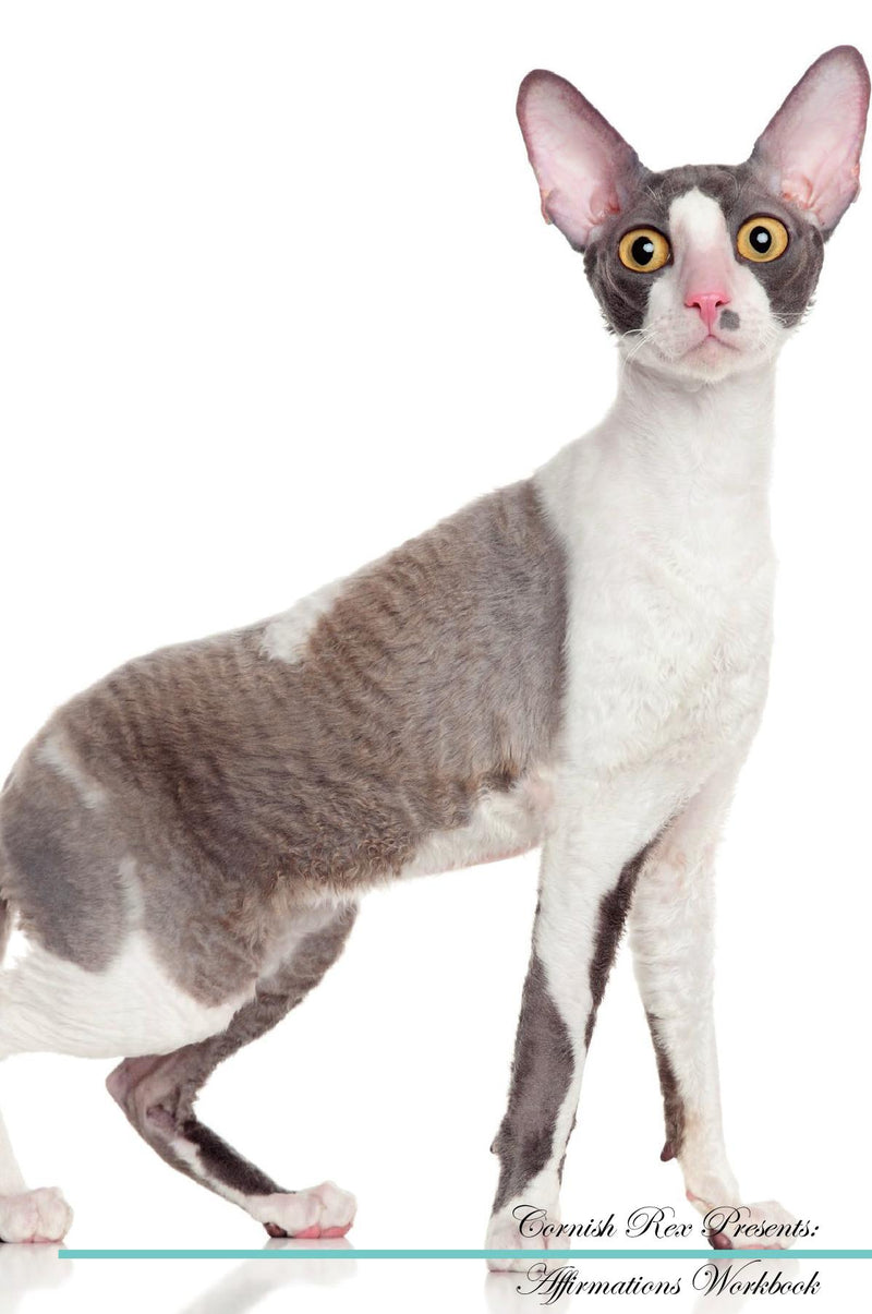 Cornish Rex Affirmations Workbook Cornish Rex Presents: Positive and Loving Affirmations Workbook. Includes: Mentoring Questions, Guidance, Supporting You.