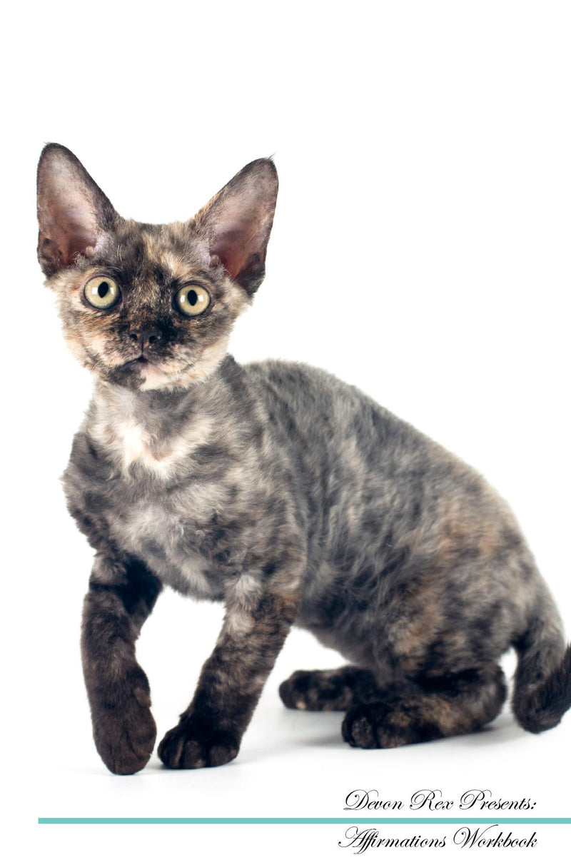 Devon Rex Affirmations Workbook Devon Rex Presents: Positive and Loving Affirmations Workbook. Includes: Mentoring Questions, Guidance, Supporting You.