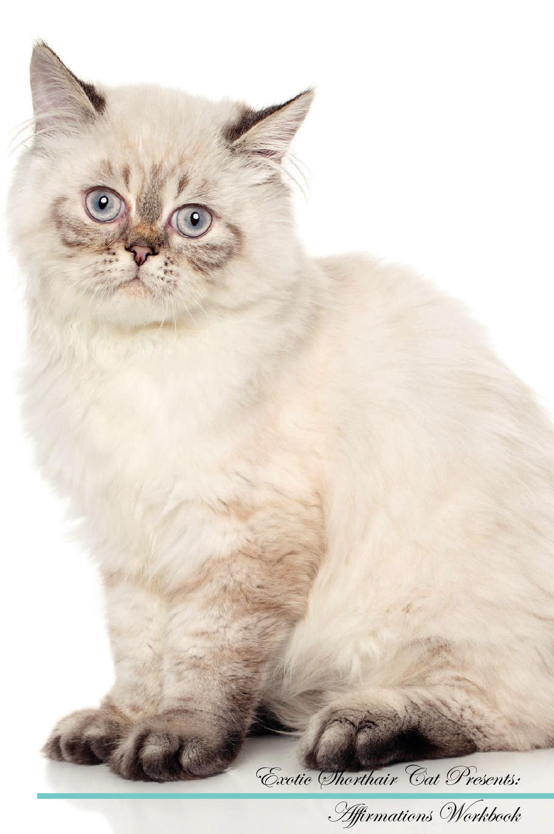 Exotic Shorthair Cat Affirmations Workbook Exotic Shorthair Cat Presents: Positive and Loving Affirmations Workbook. Includes: Mentoring Questions, Guidance, Supporting You.