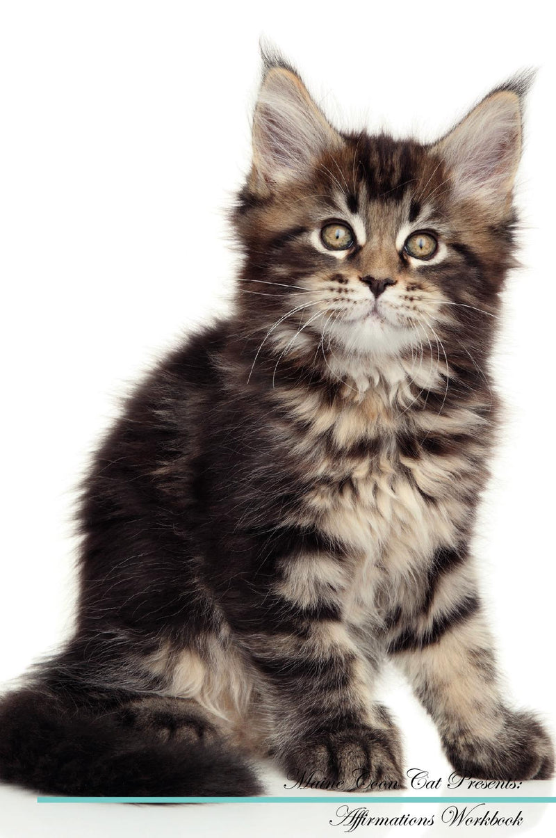 Maine Coon Cat Affirmations Workbook Maine Coon Cat Presents: Positive and Loving Affirmations Workbook. Includes: Mentoring Questions, Guidance, Supporting You.