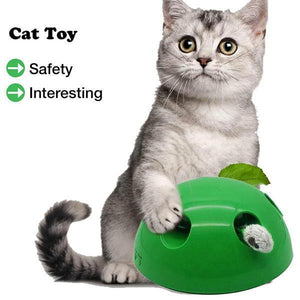 Cat Training Toy