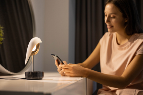 DAQICONCEPT【CHIRP】鳥鳴時計 Bird Singing Alarm Clock and Light | 黑銀款