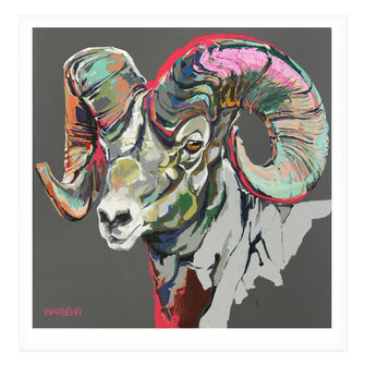 Wild Ram with Magenta Horizon, Fine Art Print