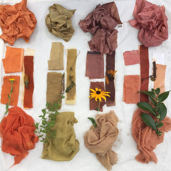 Sustainability Series: Why Use Natural Dyes?