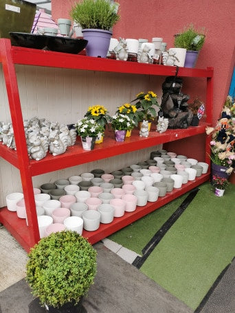 The Blooming Brilliant Garden Centre in Dermot Kehoes New Ross