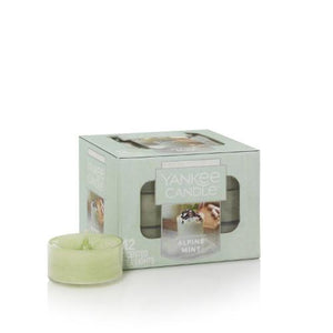 Set 12 Luces de Té Aromáticas Alpine Mint 0.35 oz - Monnry