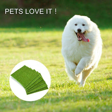 Load image into Gallery viewer, Artificial turf fake lawn landscape pet lawn - QSR-Unlimited