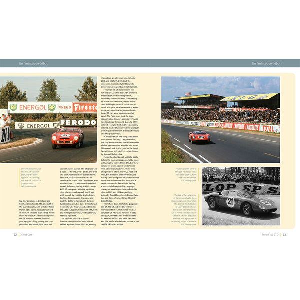 Ferrari 250 GTO - The autobiography of 4153 GT (Limited Edition)