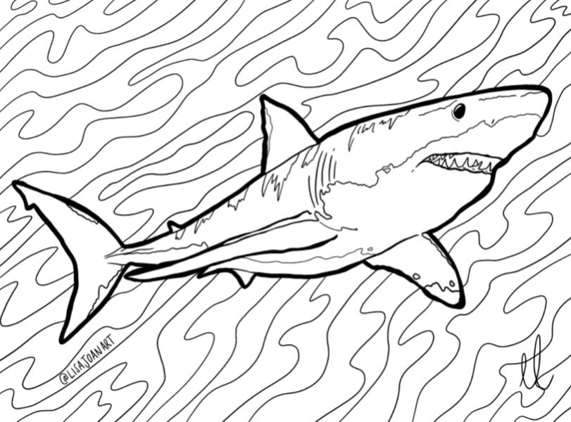 Shark Colouring Sheet