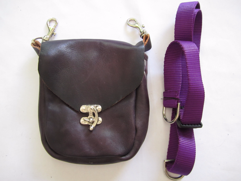 Purple Pouch with Latch