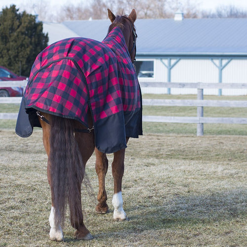 2019 Buffalo Plaid Turnout by Canadian Horsewear 300g Fill