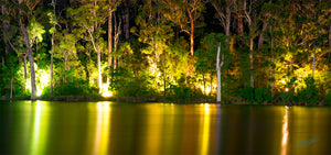 Evening Night Reflections at Karri Valley