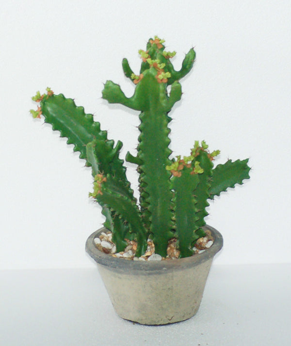 "17"" POTTED CACTUS"