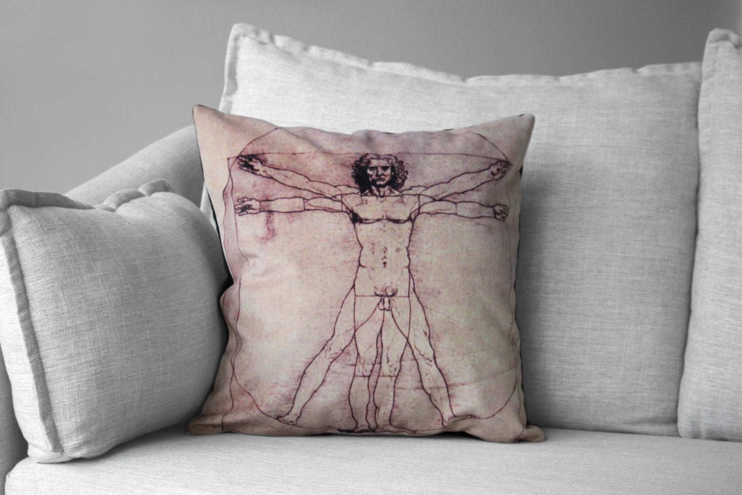 "the vitruvian man - 18"" velveteen pillow case - Leonardo da Vinci, 1485"