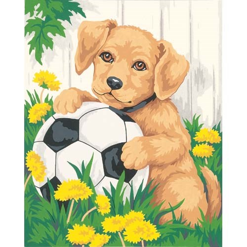 Puppy and Soccer Ball Dimensions Paint By Number