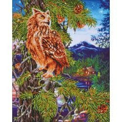 Diamond Dotz Diamond Embroidery Facet Art Kit 21.5''X26.25'' Twilight Wisdom
