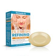 Dermactin-TS Blemish Control Cleansing Soap