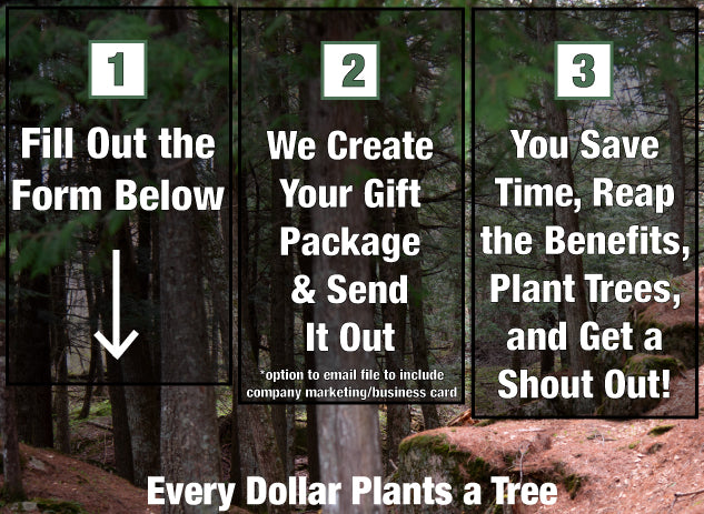 eco friendly corporate gifting instructions