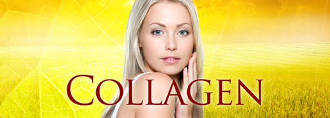 Dr Rath Collagen Vitamin