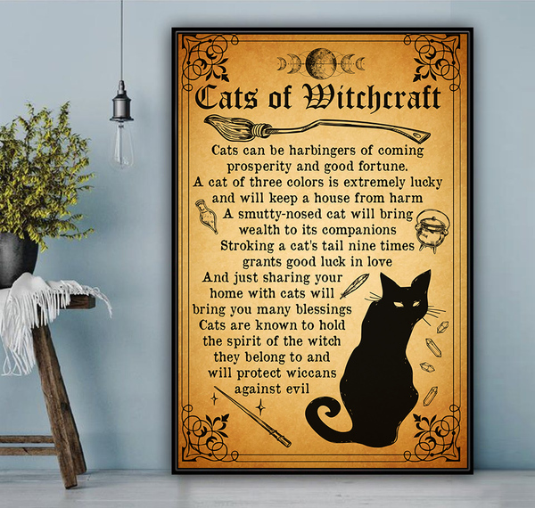 Cats of witchcraft - witchcraft 101