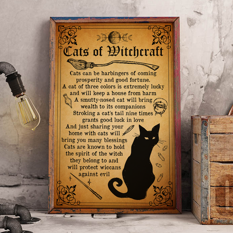 Cats Of WItchcraft - Witch Apparel