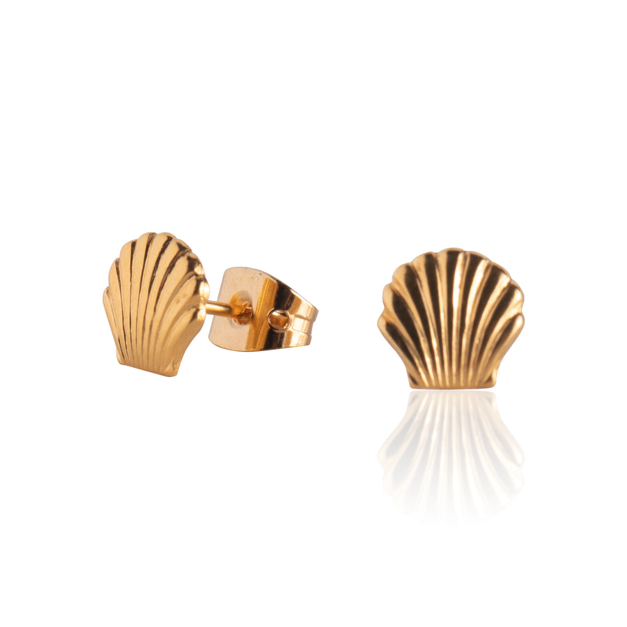 Stainless Steel Earrings | Small Sea Shell Studs | 22k Gold Plated | 1 Pair