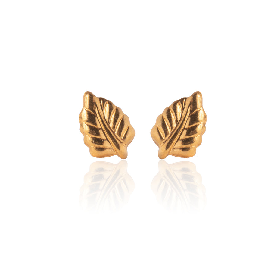 Stainless Steel Earrings | Elm Leaf Studs | 22k Gold Plated