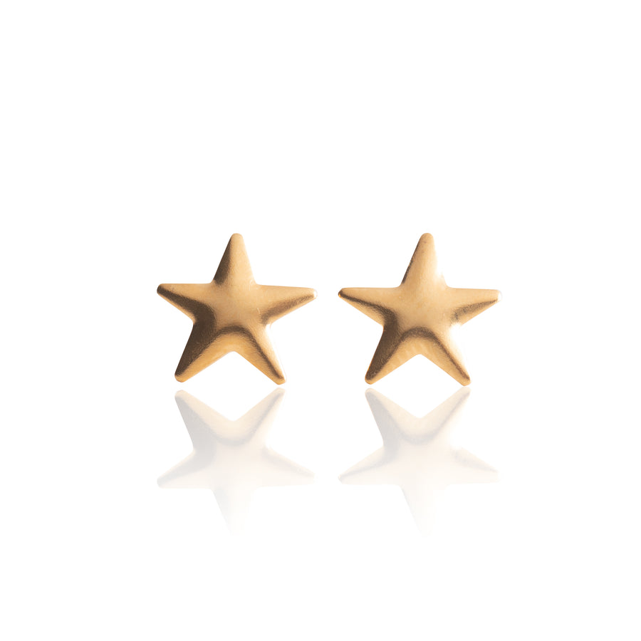 Stainless Steel Earrings | Star Studs | 22k Gold Plated