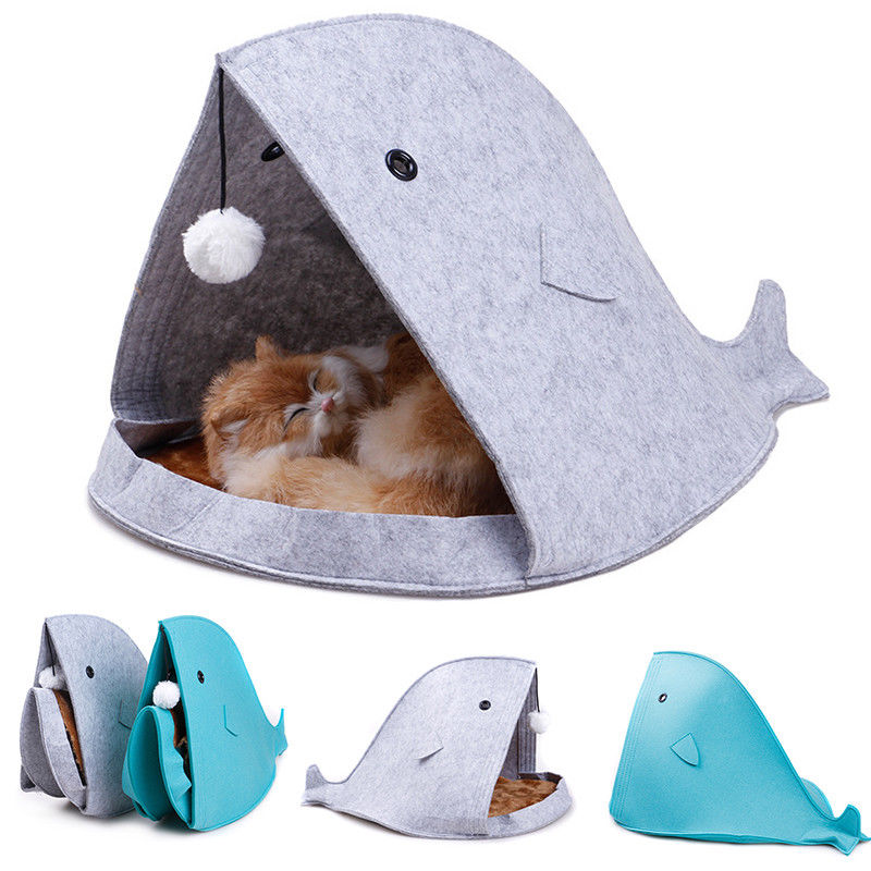 Shark Shape Folded Cats Bed