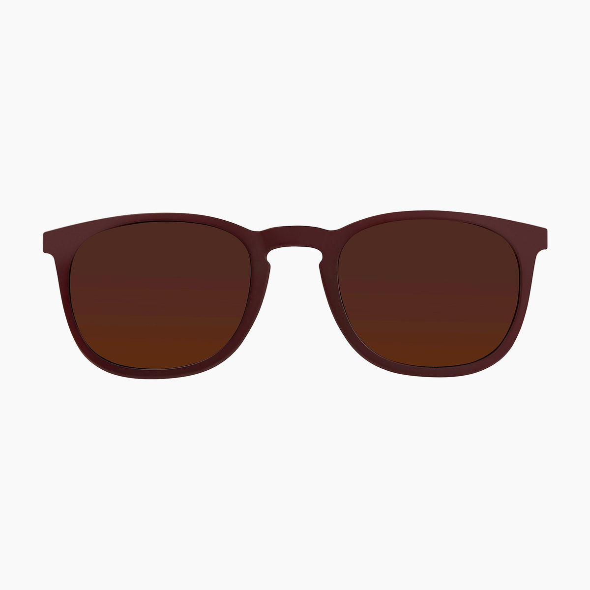 Burgundy / Solid Brown Lens