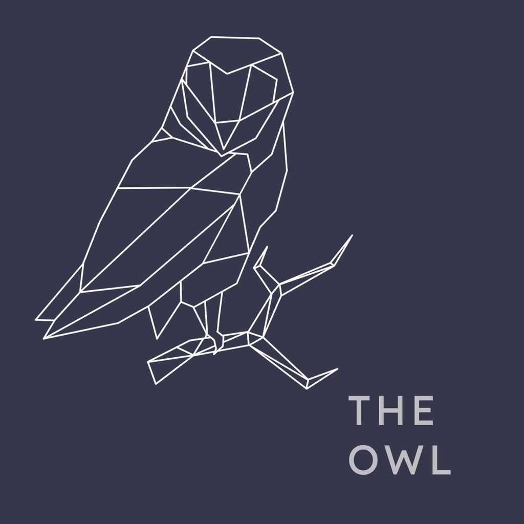 Are you an Owl? Find out your Sleep Persona