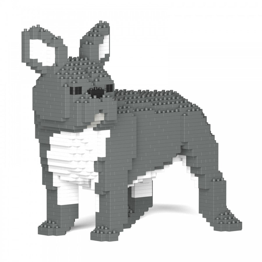 French Bulldog Type 1