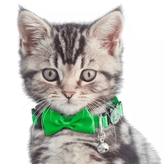 Set Of 2- Cat Collars- Bow Tie